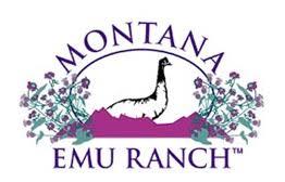 montana-ranch